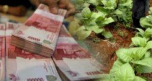 Tak Masuk Penghasil,  Bangkalan Terendah Dapat DBHCHT